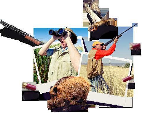 охота и рыбалка игрушки